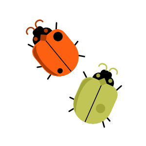 Mid Mod Finches: Beetles Vector